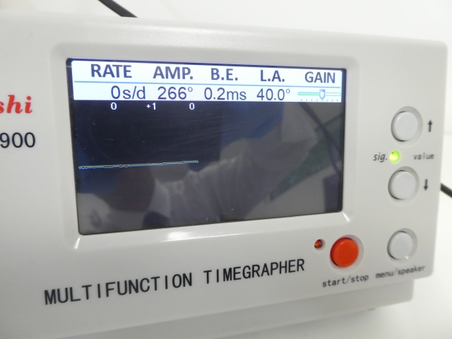 P1110390