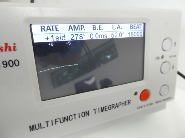 P1100266